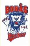 borås hockey gammal