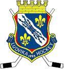 Ludvika_HC