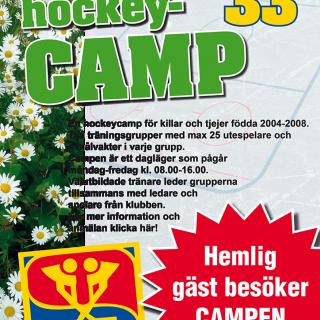 webbannons affisch sommarhockeyskola 2017